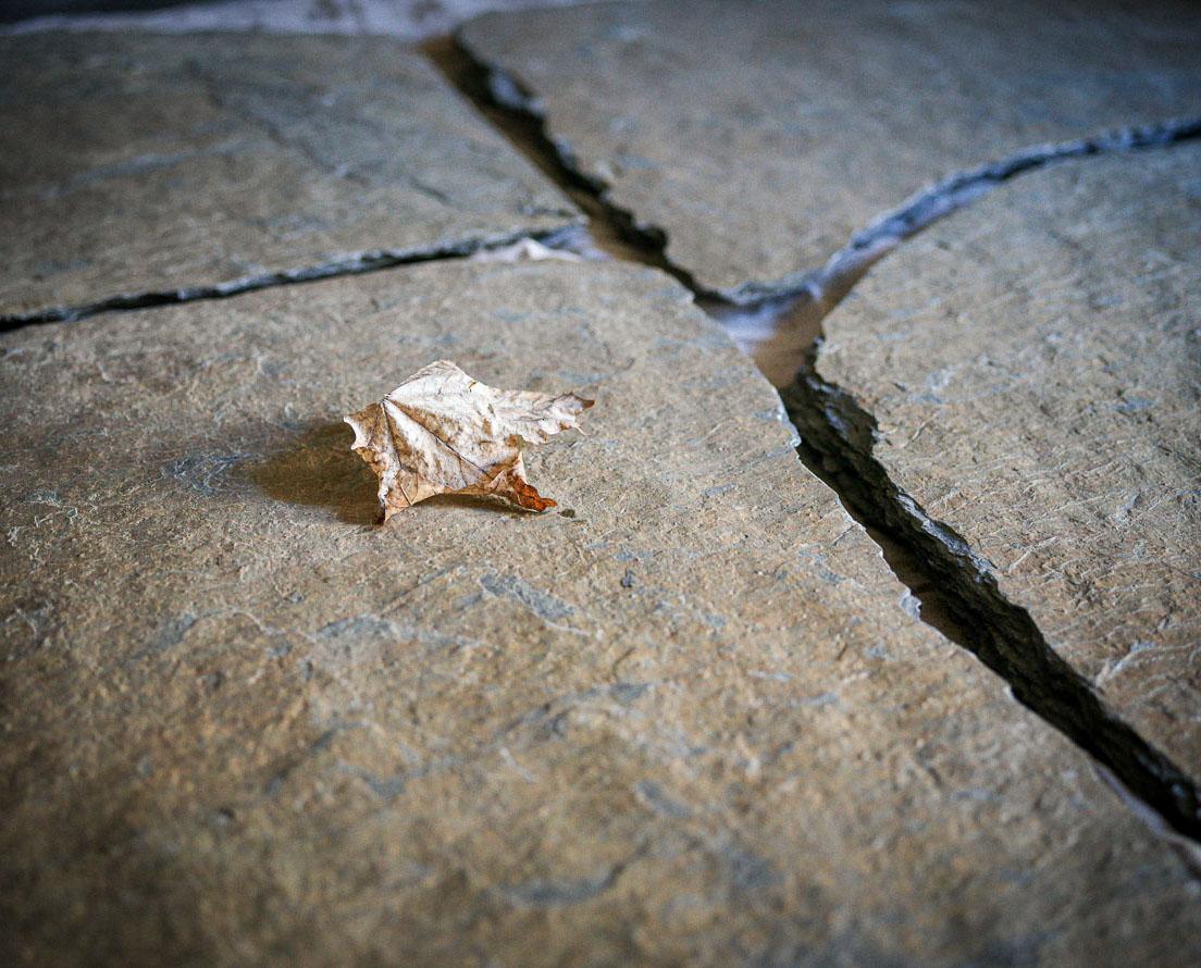 Bilde som viser bruddskifer / bruddheller Otta Rust natur fra Minera