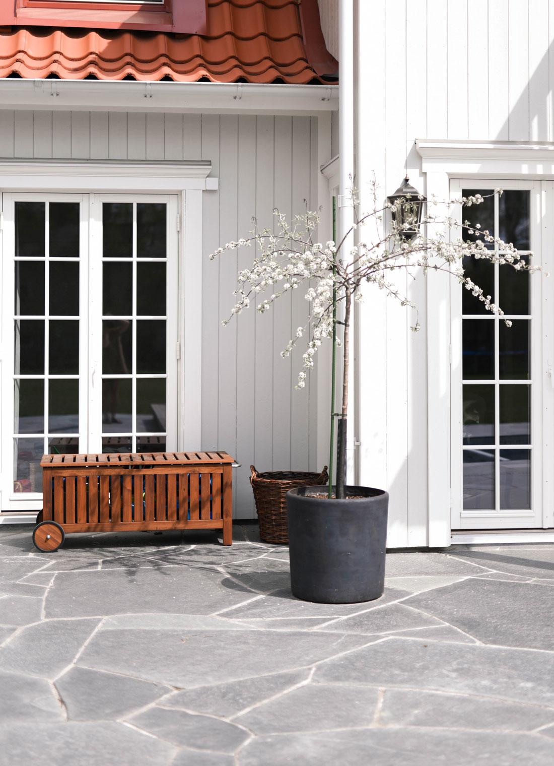En uteplass foran et hvitt hus belagt med bruddheller av Offerdalskifer. Et vakkert tre er plantet i en krukke